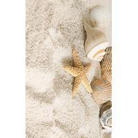SUMMER STONE В41321 2 HOLIDAY 250х400 Декор : GoldenTile : mercado