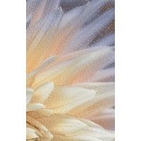 ФИОРИ 1 цветок 250х400 Декор : GoldenTile : mercado