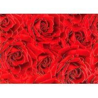 Престиж красный роза 250х350 Декор : БерезаКерамика : mercado