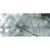 Magia серый 01 230х500 Декор : InterCerama (ИнтерКерама) : mercado