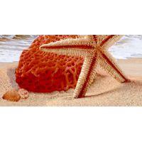 ДАЛИ песочный 02 400х200 Декор массив : Нефрит-Керамика : Mercado